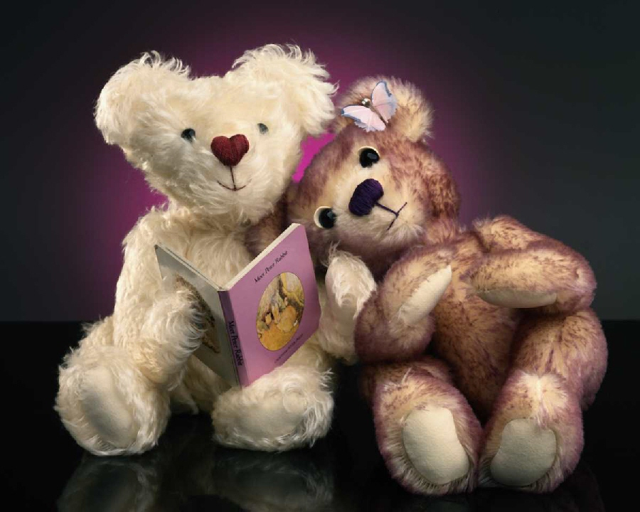 bears and book