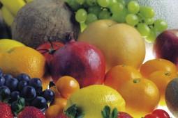 healthy live foods
